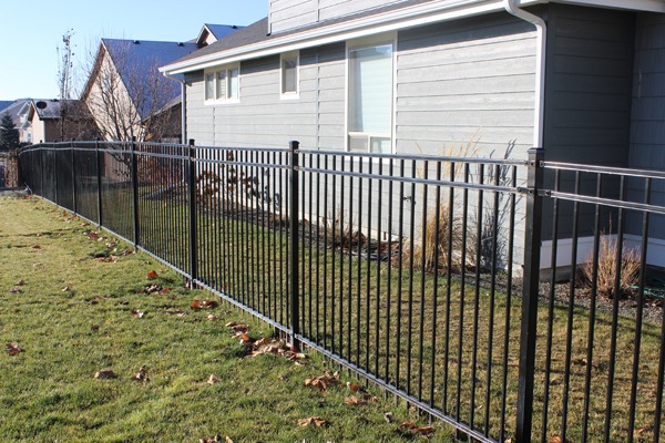 wrought iron western 3 rail -7
