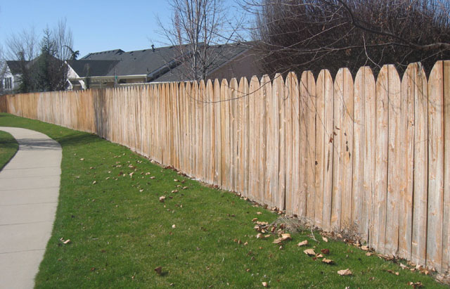 Before Fence Stain